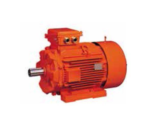 EX-PROOF Vinç Motoru